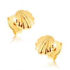 Cercei din aur 9K - scoici lucioase