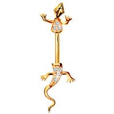 Piercing din aur galben 14K - banană, șopârlă cu corpul împărțit în două, decorat cu zirconii transparente