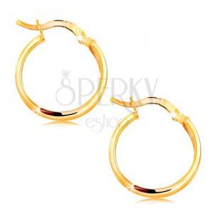 Cercei din aur 585 - cercuri cu interiorul mat, 19 mm