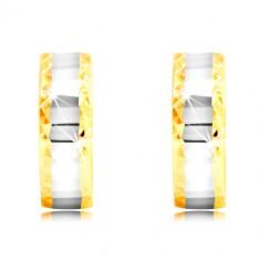 Cercei din aur de 14K - cercuri, linii din aur alb cu câmpuri mici, margini crestate
